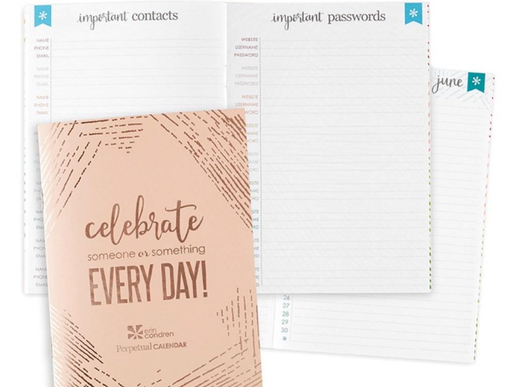 Erin Condren Perpetual Calendar