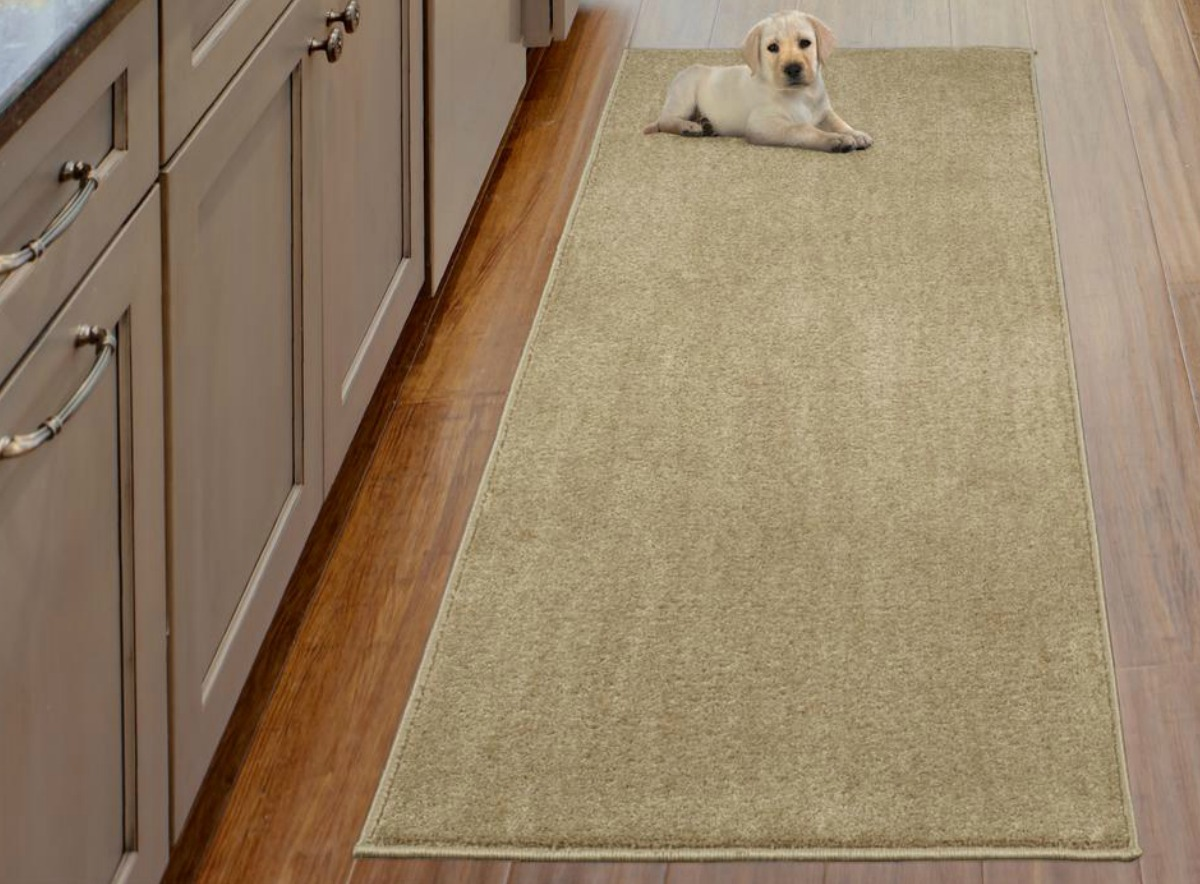 Beige colored shag area rug from home depot with small lab puppy