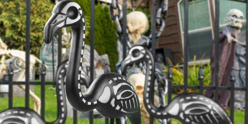 Zombie Flamingos Are Flocking To A Yard Near You