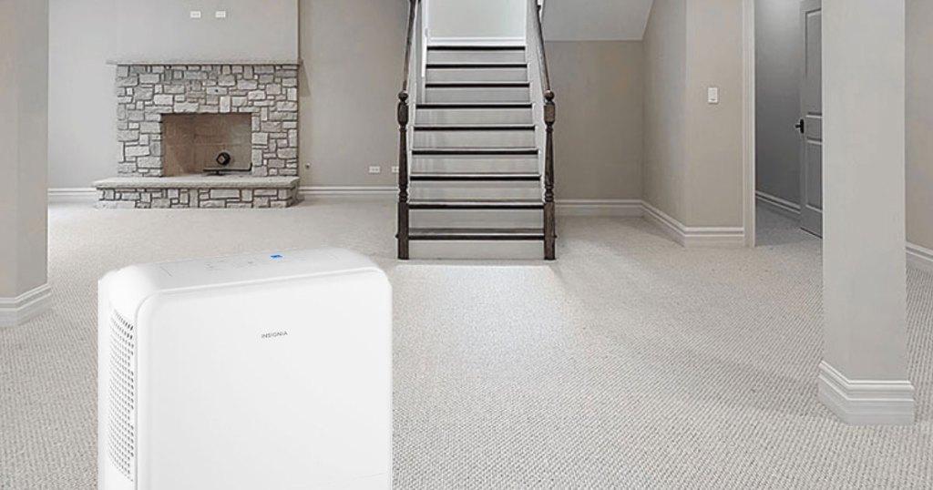 best buy dehumidifier in basement