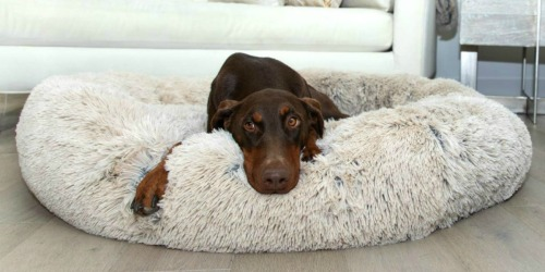 8 Best-Selling Dog Beds on Amazon Right Now