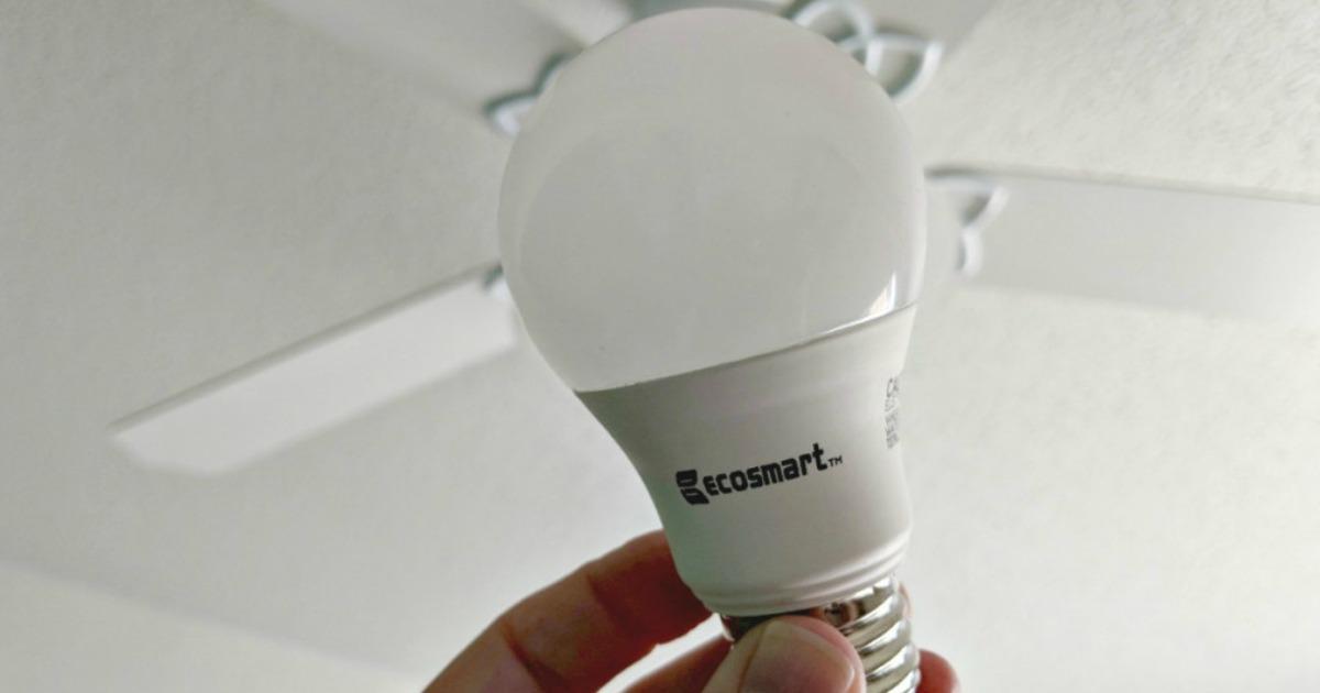 hand holding up ecosmart bulb
