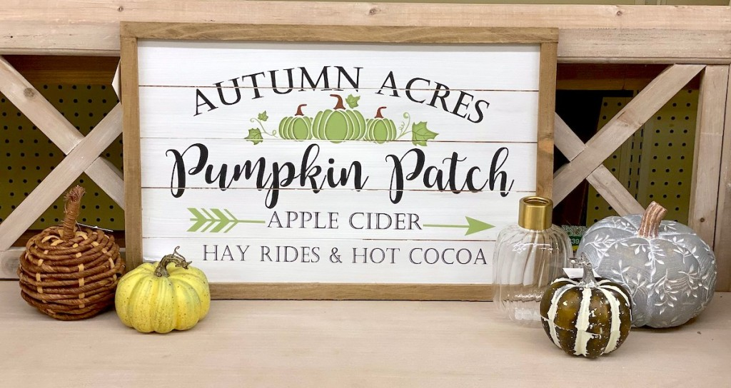 pumpkin patch fall sign with various styles of pumpkins on store table