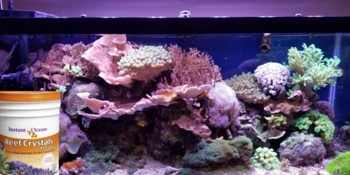Instant Ocean Reef Crystals 160-Gallons Only $37.99 Shipped (Regularly $55)