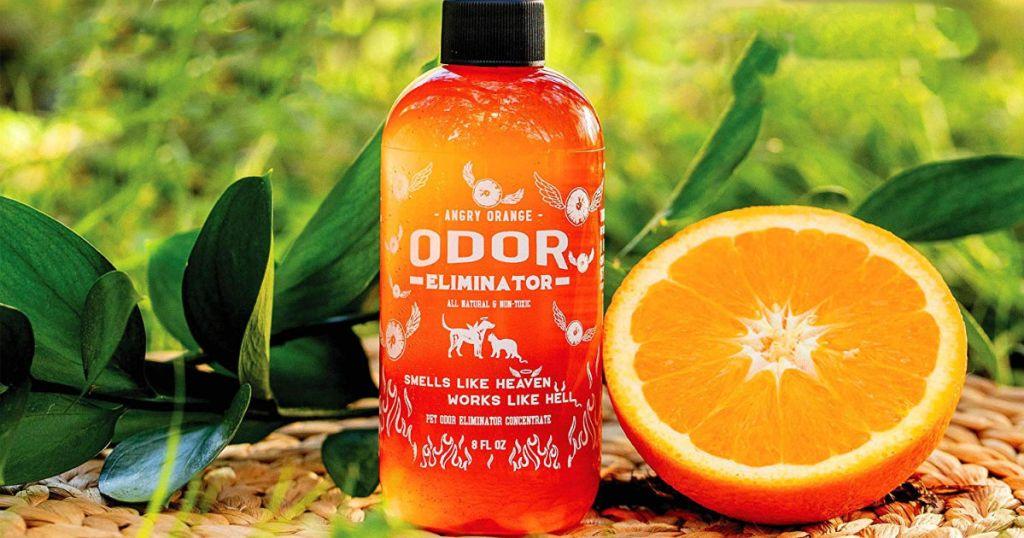 Angry Orange Odor Eliminator with orange