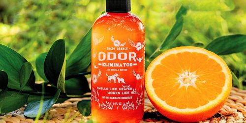 Angry Orange Pet Odor Eliminator Concentrated Cleaner Only $14 Shipped on Amazon