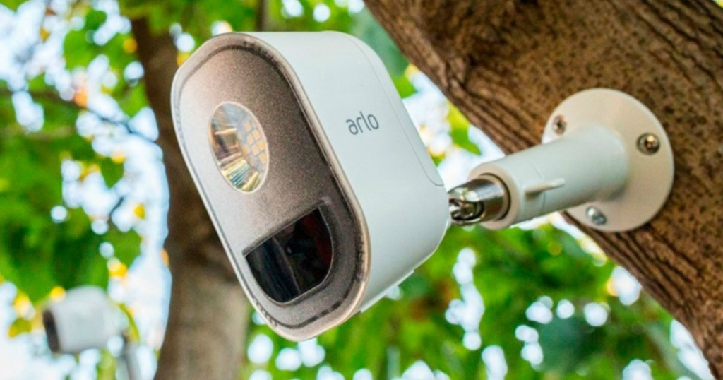 Motion activated security system on tree trunk