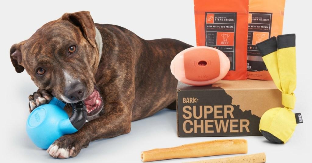 dog with Barkbox Super Chewer box and treats