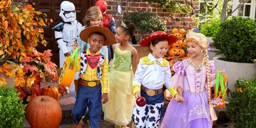 30% Off Disney Costumes & Accessories   Toy Story, Disney Princesses & More