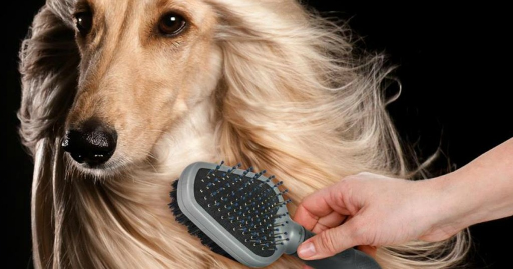 dog being groomed with a brush