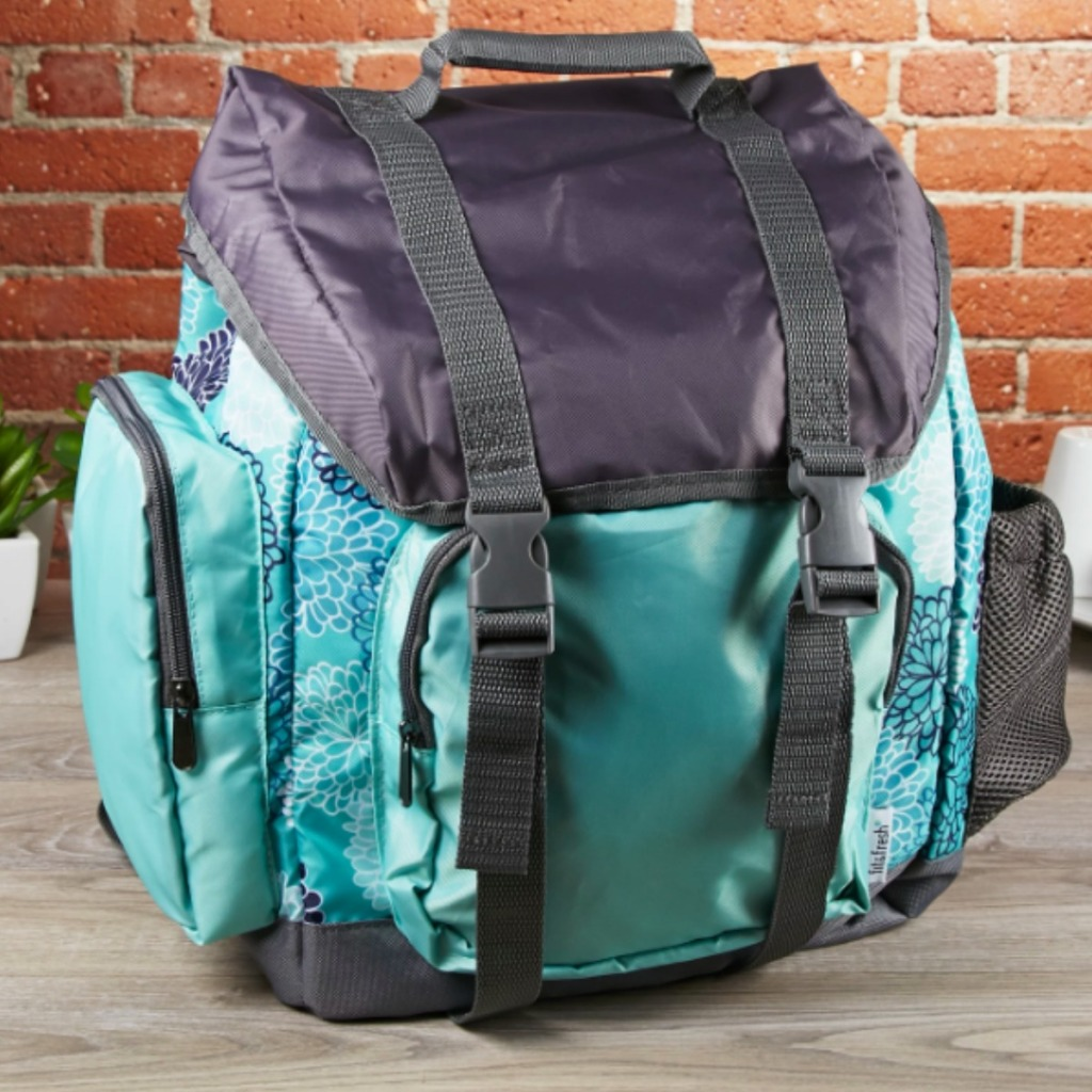 teal and grey back pacl