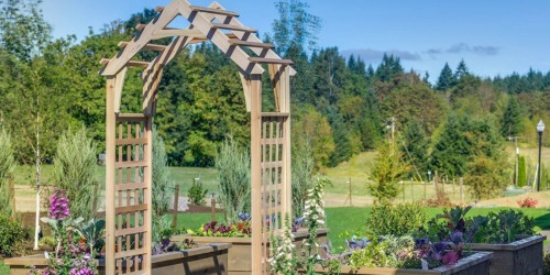 Up to 75% Off Garden Trellises at Lowe's