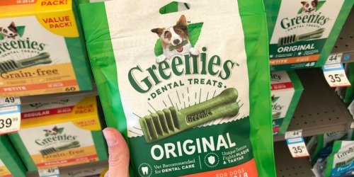Greenies Dental Dog Treats 72-Count as Low as $35.93 Shipped (Regularly $90)