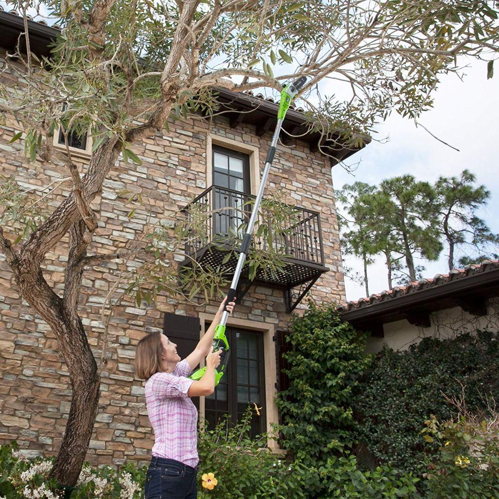 woman cutting tall tree with Greenworks Pole Saw