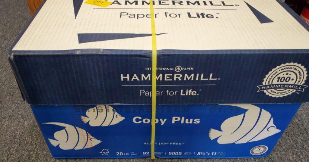 Hammermill Copy Plus case on carpet