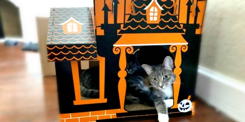 Target Sells a Halloween Haunted House for Your Cats
