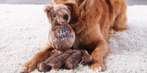 KONG Wubba Friend Dog Toy Only $6 at Walmart (Regularly $15) + More