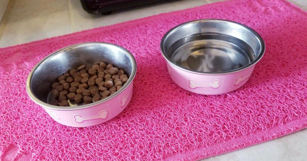 pink Loving Pets Coastal Bella Pet Bowls on pink mat