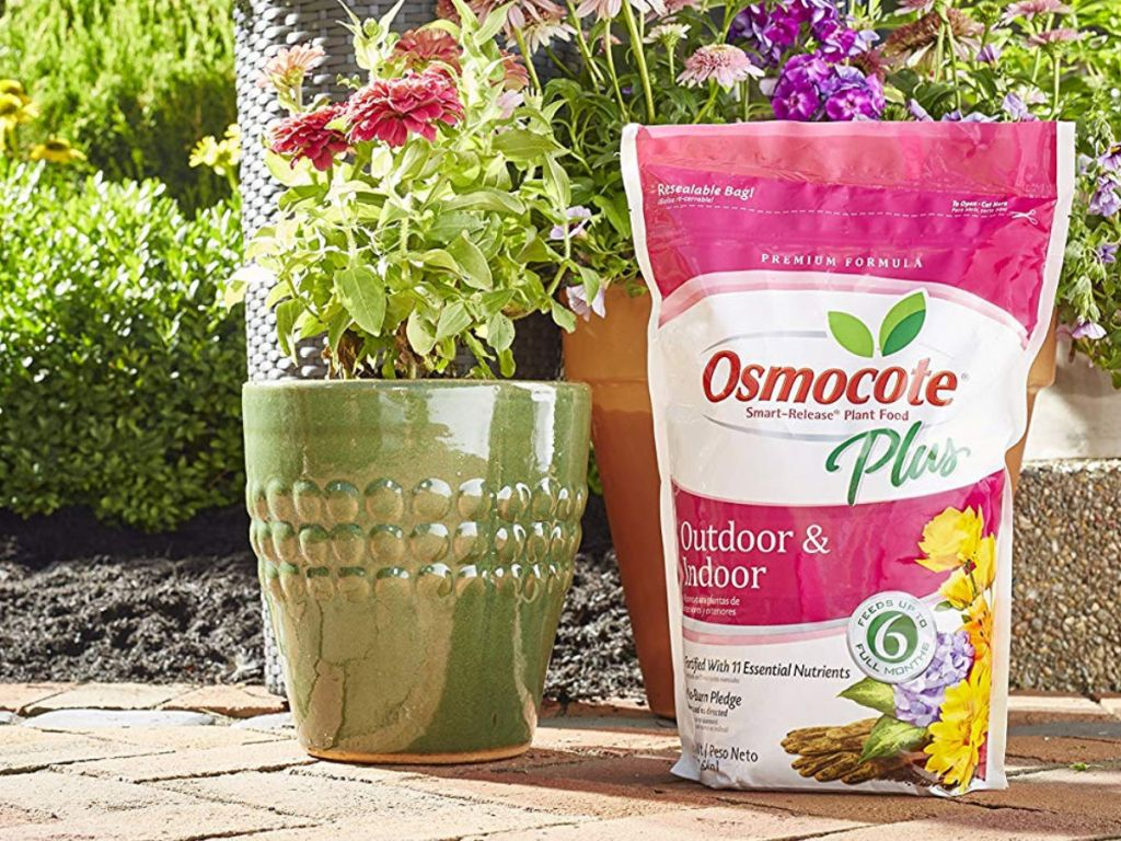 Osmocote Smart-Release Plant Food Plus Outdoor and Indoor