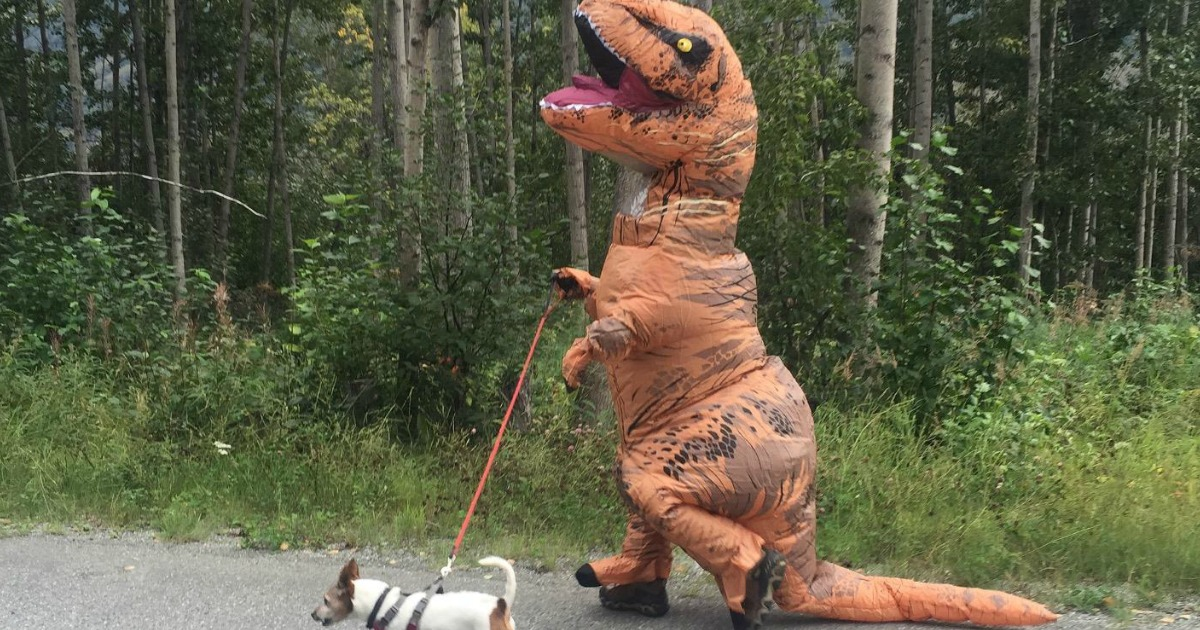 person wearing Rubie's Inflatable T-rex costume while walking their dog