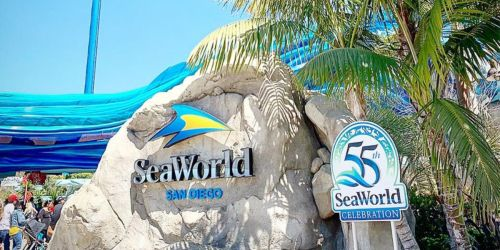 SeaWorld San Diego Fun Card Just $91.99 | Unlimited Visits Through December 2020