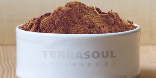 Terrasoul Superfoods Raw Organic Cacao Powder 1-Pound Bag Just $5.46 Shipped