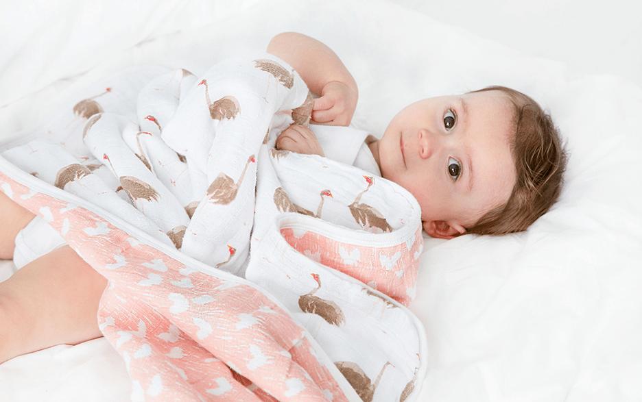 aden + anais White & Pink Flock Dream Blanket