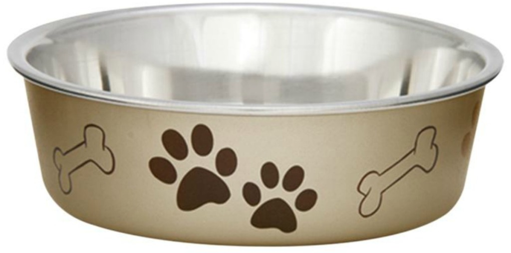 gold dog food bowl with paw prints
