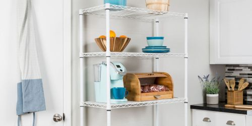 Honey-Can-Do 5-Tier Adjustable Shelving Unit Only $36 Shipped at Amazon (Regularly $100)