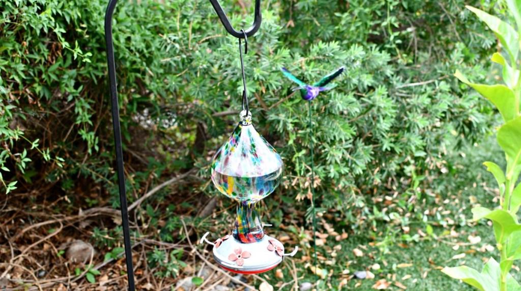 hummingbird feeder hanging on shepherd hook