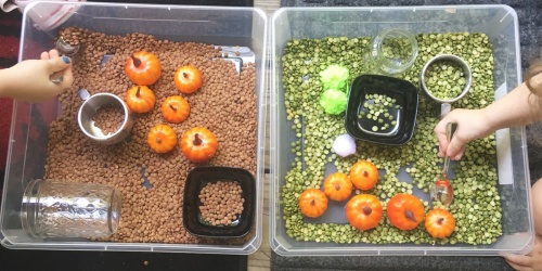 Frugal Seasonal Sensory Bins | Perfect Fall Fun for Toddlers