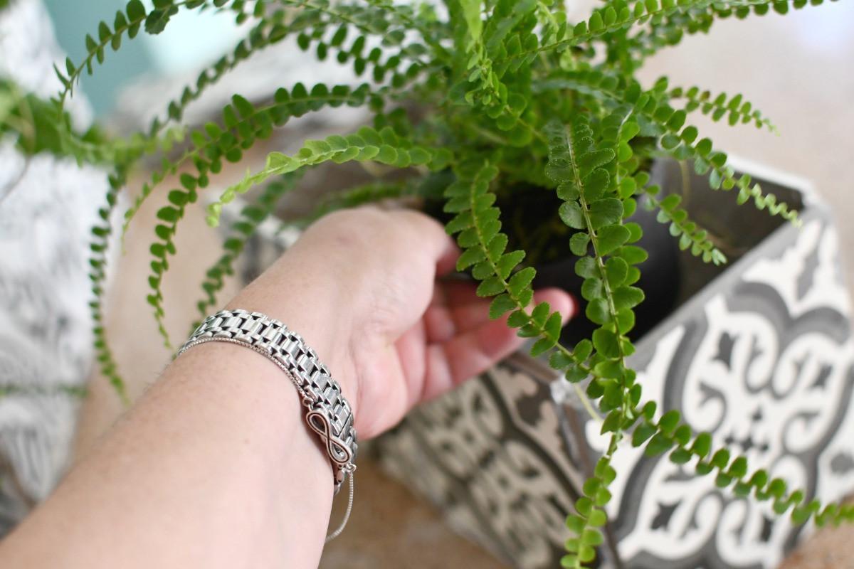 placing plants into ceramic planter