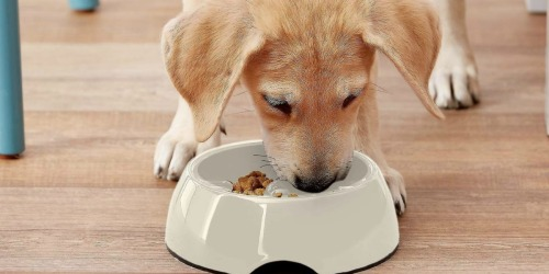 Up to 75% Off Pet Bowls & Dishes at Amazon