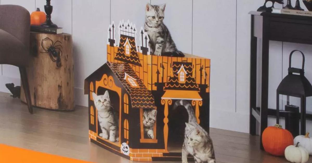 Haunted cat mansion
