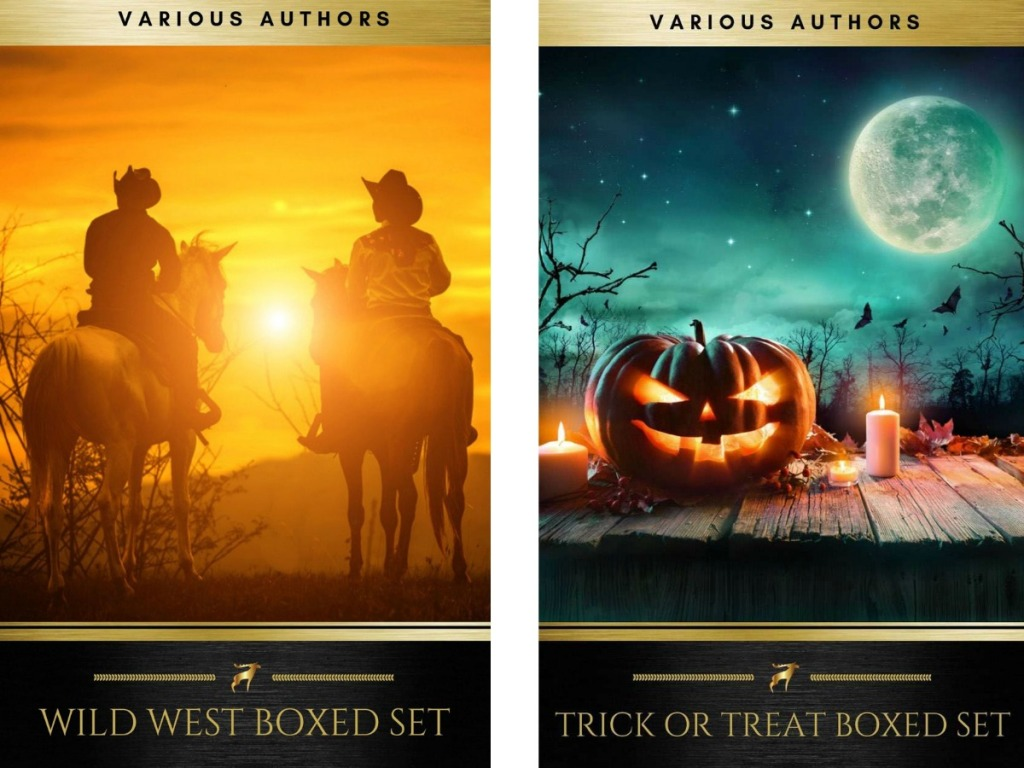 cowboy book cover and halloween book cover