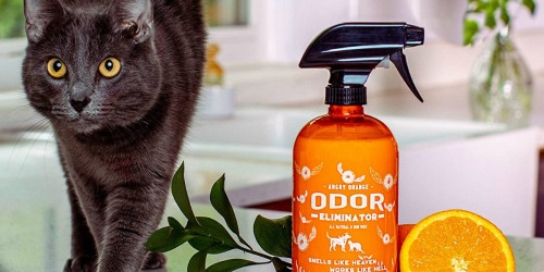 Eliminate Pet Odors w/ Angry Orange Odor Eliminator Spray at Amazon