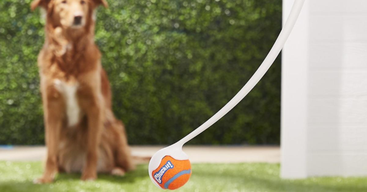Chuckit! Ball Launcher