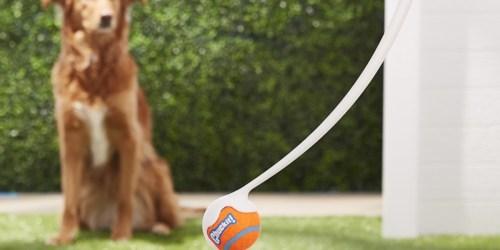 Chuckit! Ball Launcher as Low as $3.99 (Regularly $15) + More Pet Deals