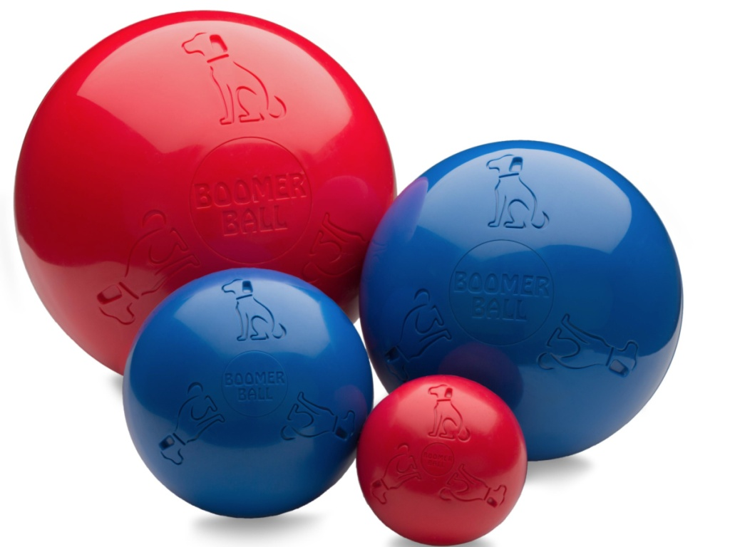 Boomer Balls for Dogs
