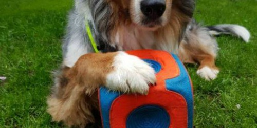 Chuckit! Kick Cube Dog Toy Only $5.25 (Regularly $25)