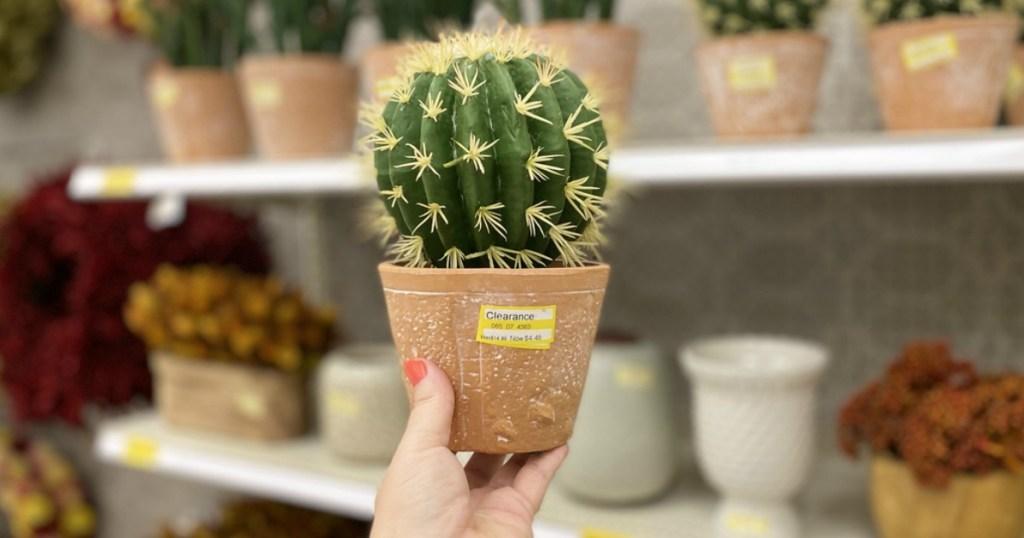 Cute Cactus Plant at Target