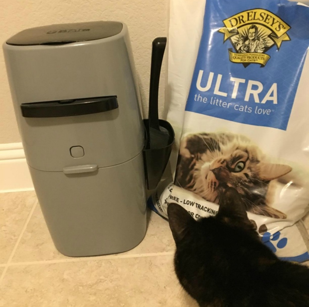 liter genie, Dr. Elsey's cat litter and black cat