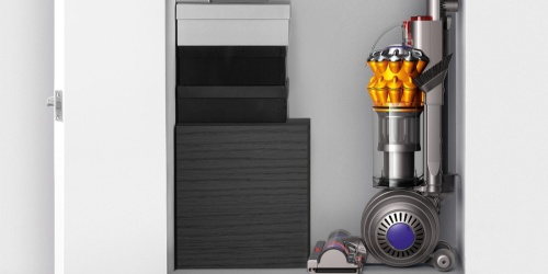 Refurbished Dyson Small Ball Multi Floor Upright Vacuum Only $134.99 Shipped