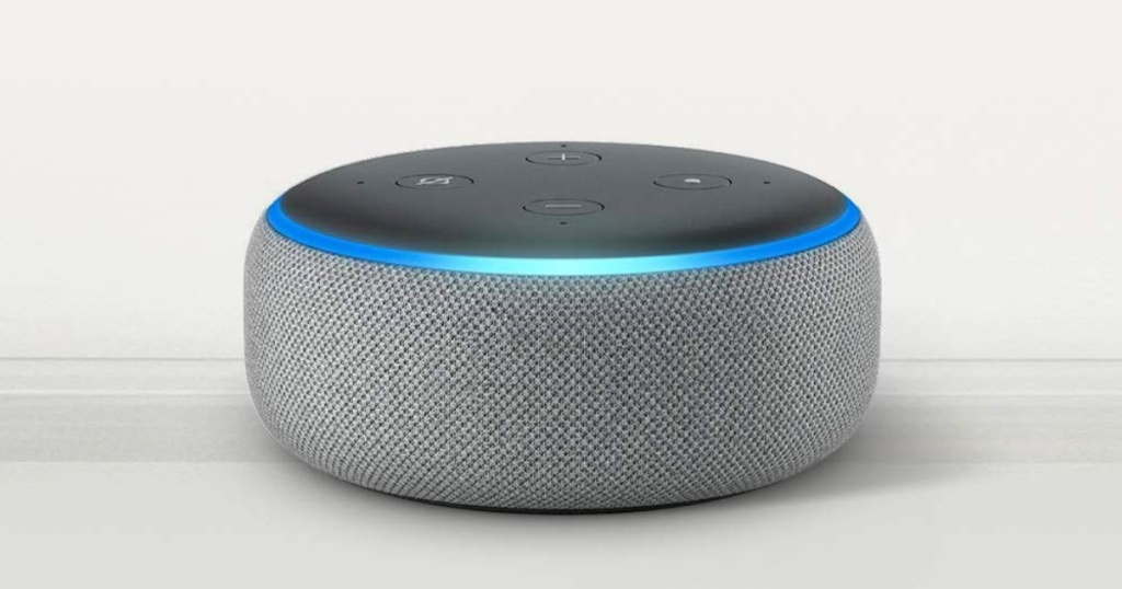 heather gray echo dot