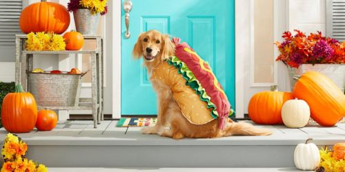 Up to 35% Off Halloween Pet Costumes at Chewy.com | Hot Dog, Star Wars & More