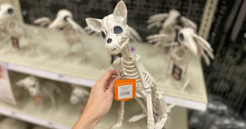 Chihuahua Skeleton Halloween Decor Target