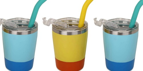 Stainless Steel Kids Cups w/ Straws & Lids 2-Pack Only $11.89 at Amazon