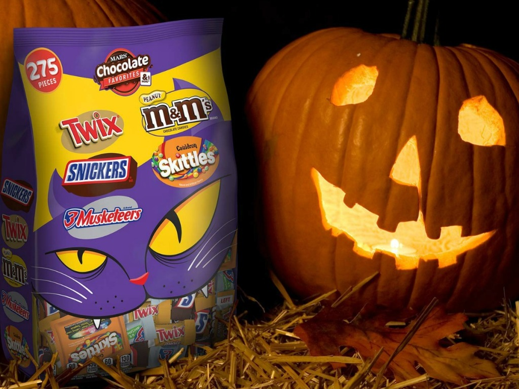 picture of March Chocolate pieces with a pumpkin