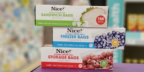 Nice! Brand Storage Bags Just 92¢ Each at Walgreens| No Coupons Needed
