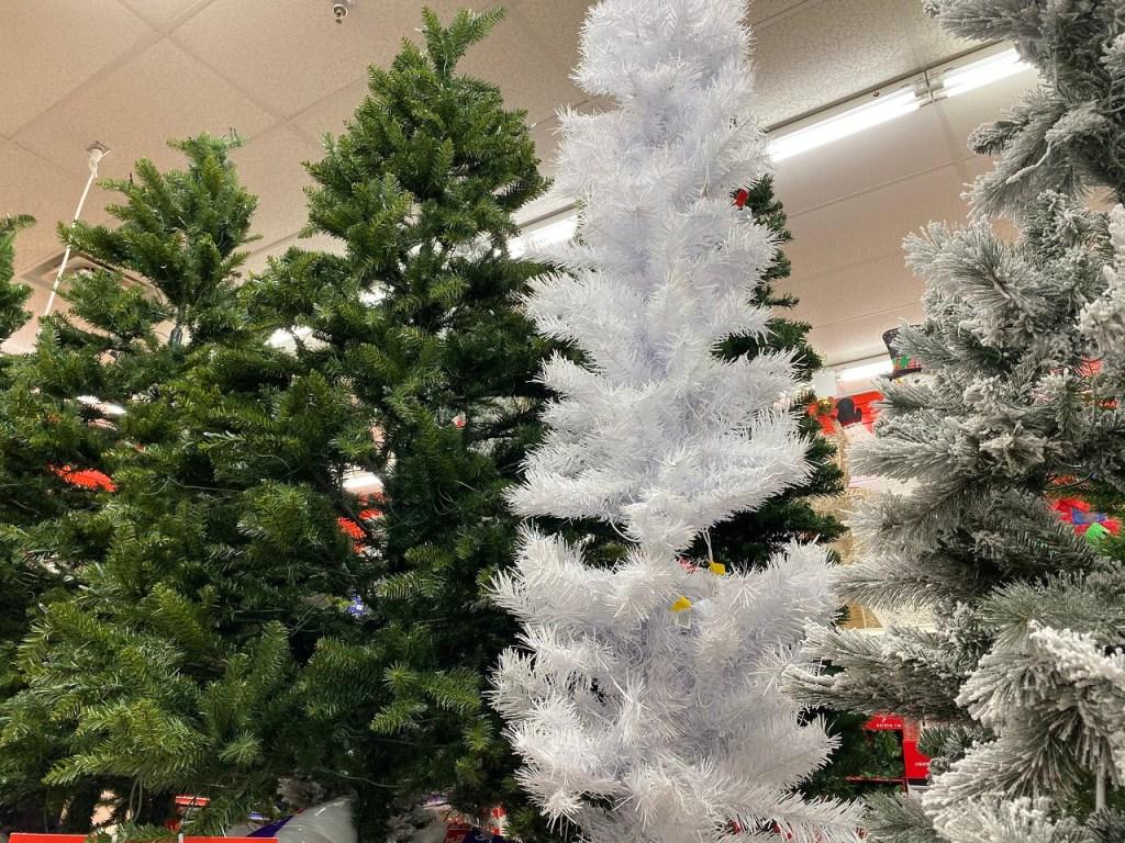 Norway White Slim Tree